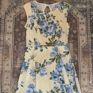 Blue and white floral tea dress